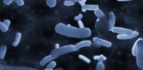 legionella-training-courses